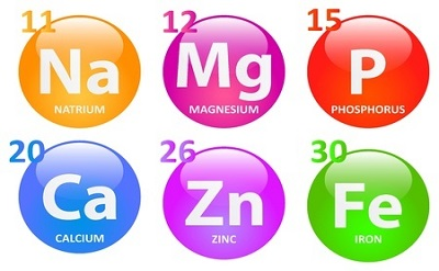 Minerals are vital