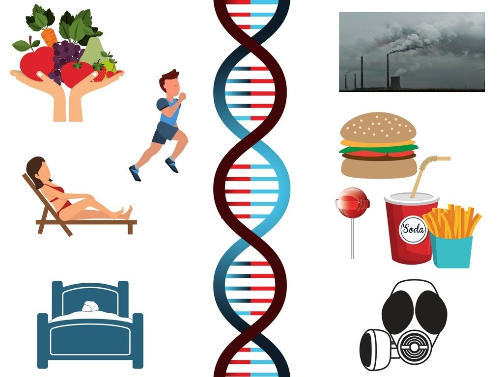 MTHFR and Other Gene Testing